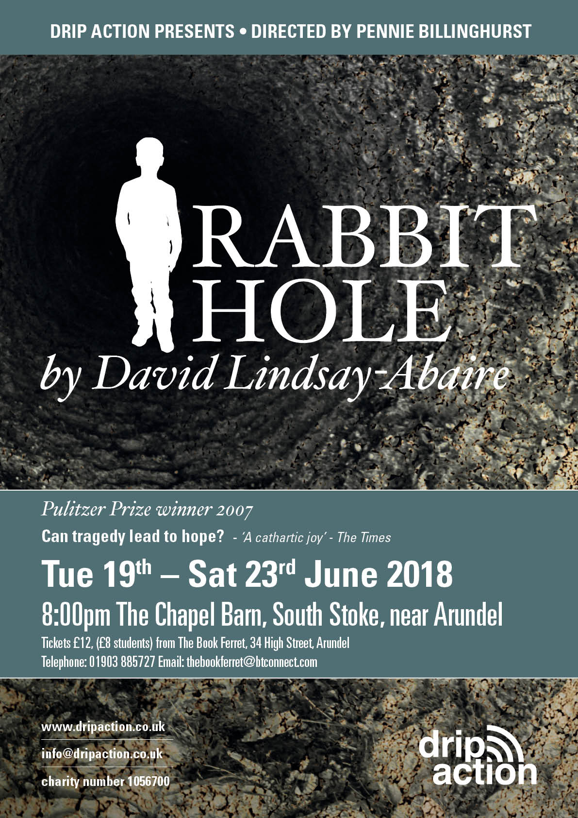 Rabbit Hole by David Lindsay Abair